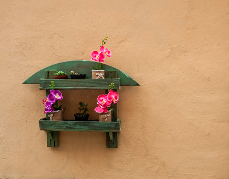 Small flowerpot on a wall in an alley of city of Sassari