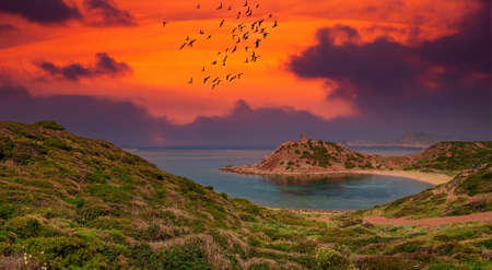 Porticciolo gulf and old tower at sunset Foto de archivo
