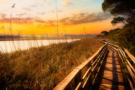 wooden footbridge near the pond at dramatic red sunset