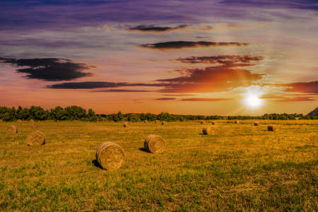 Landscape of field with bales of hay under dramatic cloudy sky at sunset with sun flare
