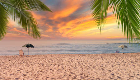 Beach umbrellas at dramatic sunset with palm leaves Foto de archivo