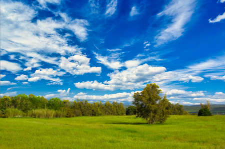 landscape of meadow in a sunny day and beautiful cloudy sky