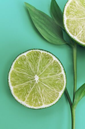 Mint mood. Blooming lime Banque d'images