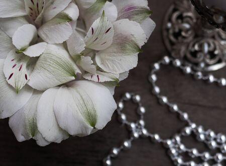White flower petals on a dark background.