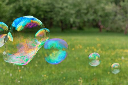 Soap bubbles in nature. holiday for children