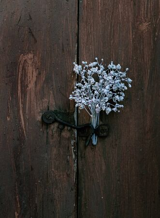 Flower arrangement with a latch. White flowers. Dark background. Banque d'images