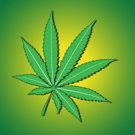 Marijuana leaf Vector illustration.