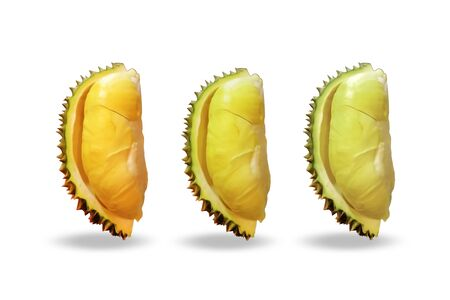 Durian Set on white background. Reklamní fotografie