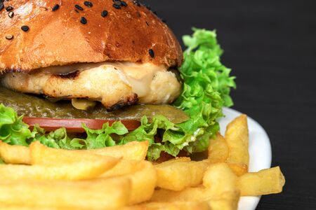 tasty appetizing burger on a white terrel with french fries on a gray background