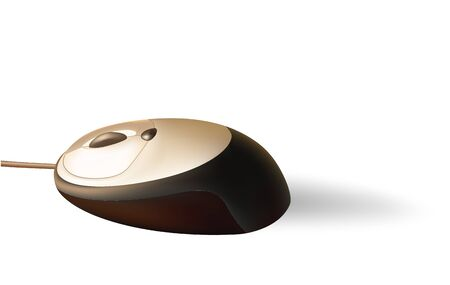 botton: Brown PC mouse with brilliant surface and shadow.