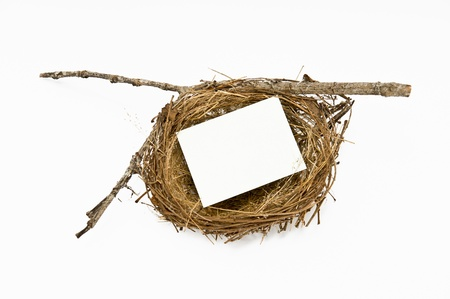 Real bird nest with blank notepad on white Stock Photo