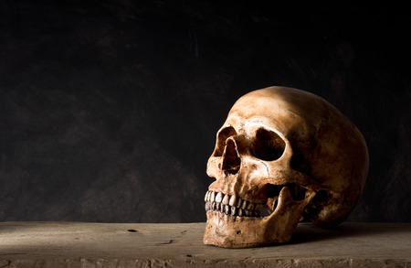 Still life photography, human skull leave at old wood on dark background with space for text Stock Photo