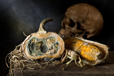 Still life photography,human skull with moldy pumpkin and corn on wood plank