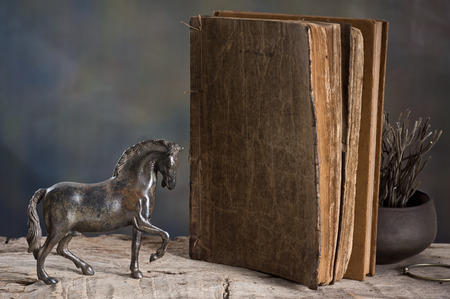Still life photography, metal horse model with old reference book Stock Photo