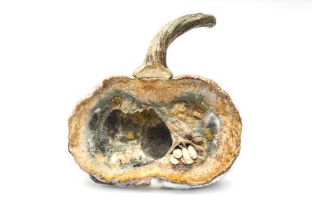 moldy pumpkin on white background Stock Photo