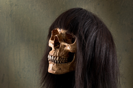 human skull wearing dark brown wig photo