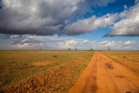 astonishing: Astonishing view of a road in the middle of nowhere in Kenya