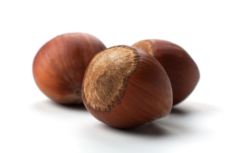 macro picture of three hazelnuts in white background Imagens