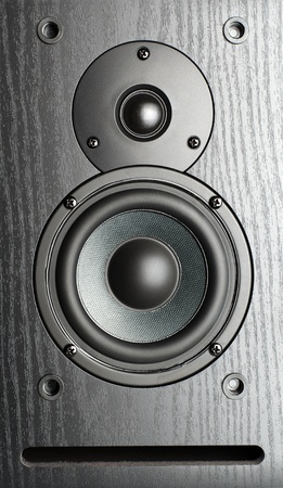 sub woofer: speakers and a passive radiator on wooden background