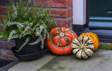 Halloween pumpkin in front of the door.