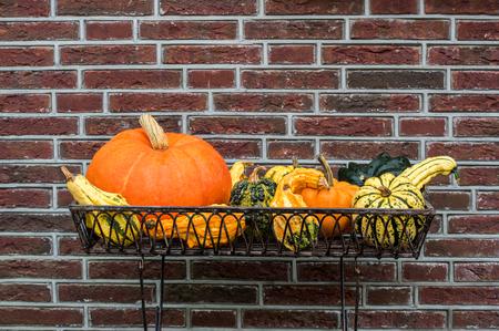 Halloween Pumpkins composition in the metallic basket.