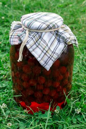 frutta sciroppata: canned fruit on the grass