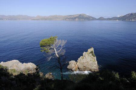 coast of mallorca photo