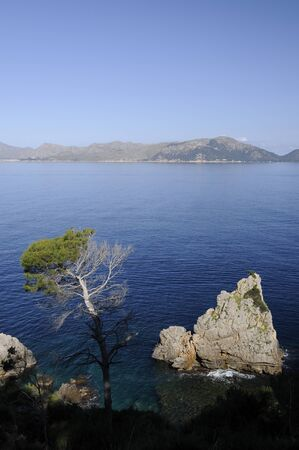 coast of mallorca photo