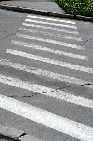 paso de cebra: cruce de peatones vacía en la calle de la ciudad Foto de archivo