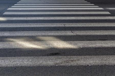 crosswalk: emty crosswalk on the street Stock Photo