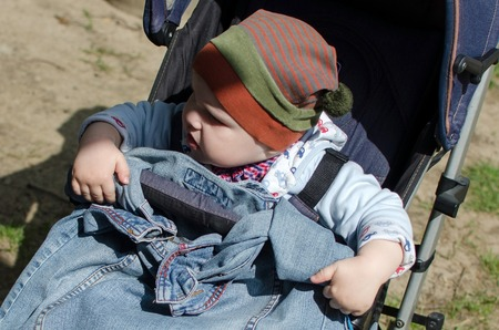 bo: Small baby bo in the carriage in the park Stock Photo