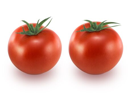Tomato isolated on a withe background Stock Photo