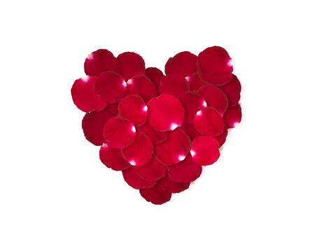 Pétalos de rosa roja corazón aislado sobre un fondo blanco. Foto de archivo