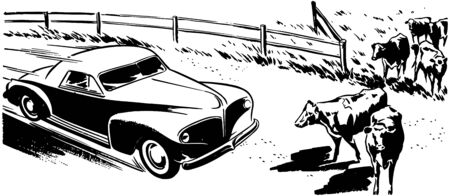 the motorists: Country Drive Illustration
