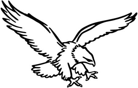 eagle flying: Flying Eagle