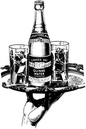quinine: Canada Dry Quinine Water