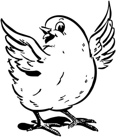 pollitos: Polluelo lindo