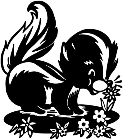stinktier: Cute Skunk