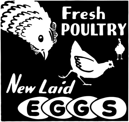 Fresh Poultry Vector