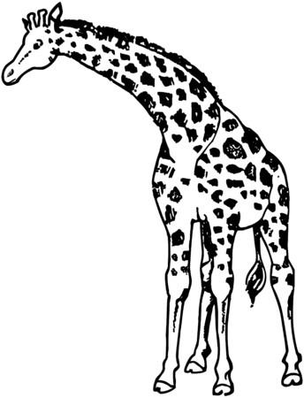 scalable: Giraffe