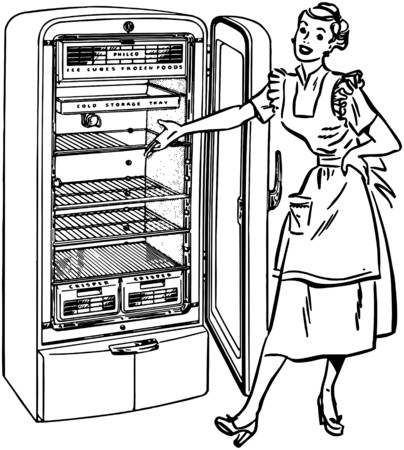 Lady With New Fridge Vector