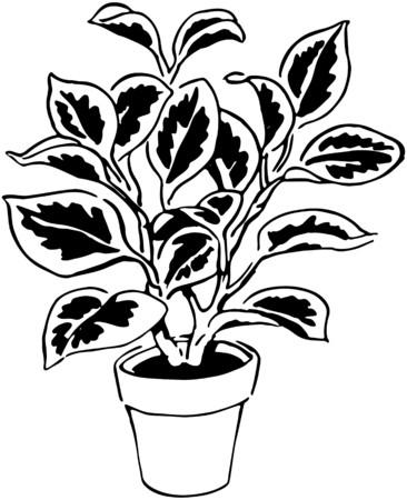 indoor garden: Plant 9 Illustration