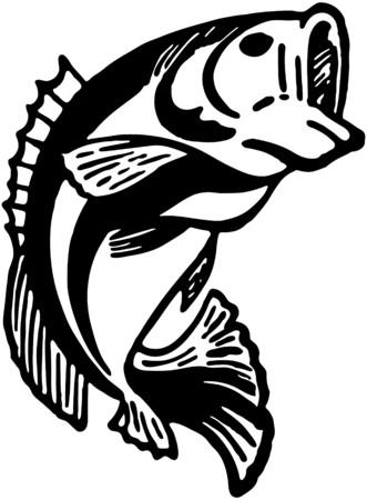 Leaping Fish Illustration