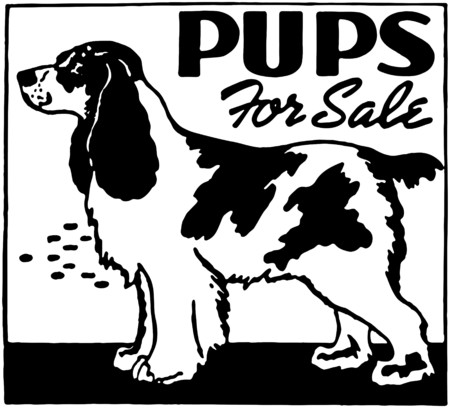 mutts: Pups For Sale