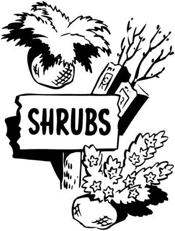 shrubs: Shrubs