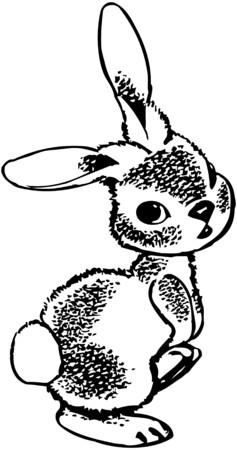 peter: Rabbit