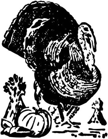 Turkey And Pumpkin Vector