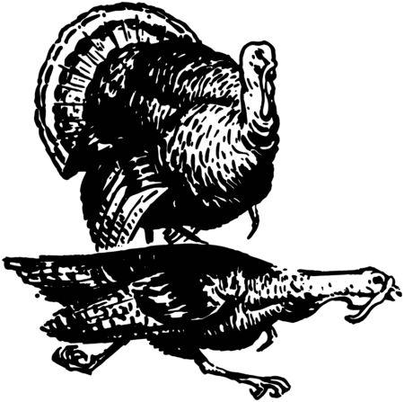Two Turkeys Vector