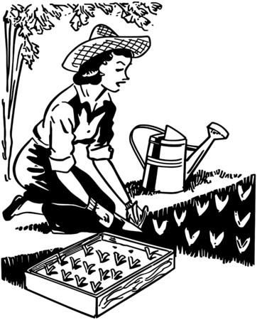 Vrouw Planting Garden Stockfoto - 28347256