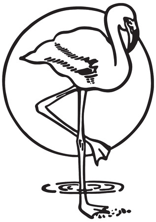Flamingo 免版税图像